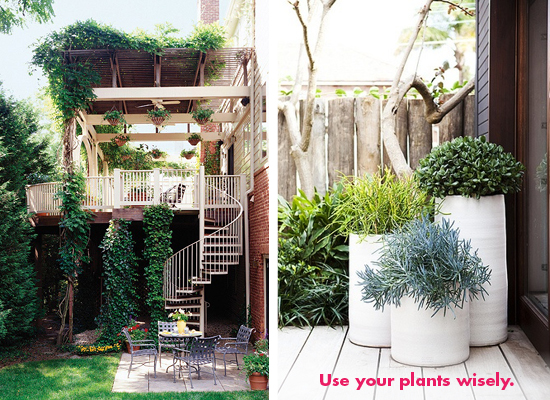 potted plants in tall white planters