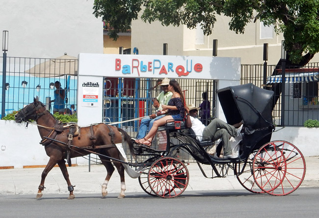 horse carriage - old havana photos