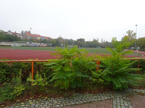FV Blau-Weiß Spandau 6:0 Märkischer SV Normannia