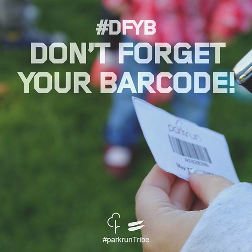 DFYB image