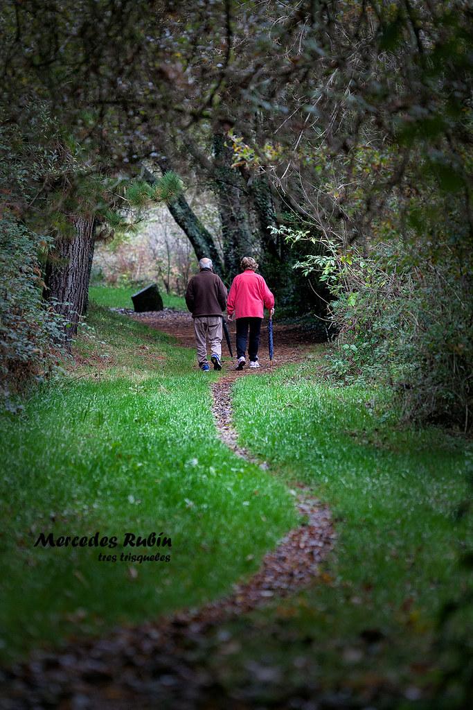 Caminar...