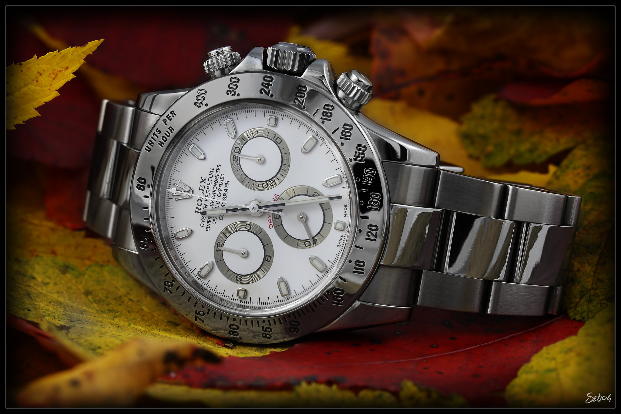 A Rolex Daytona watch with an Autumn color background.