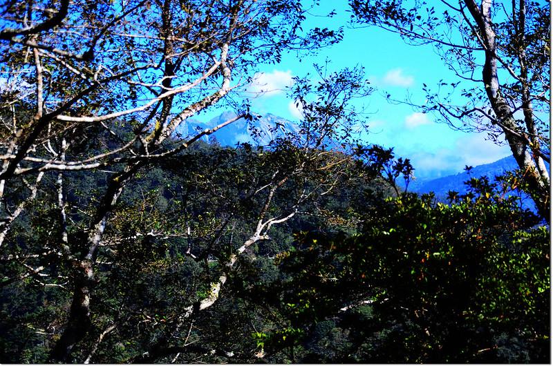 焦土山登山途中北望南湖、中央尖山