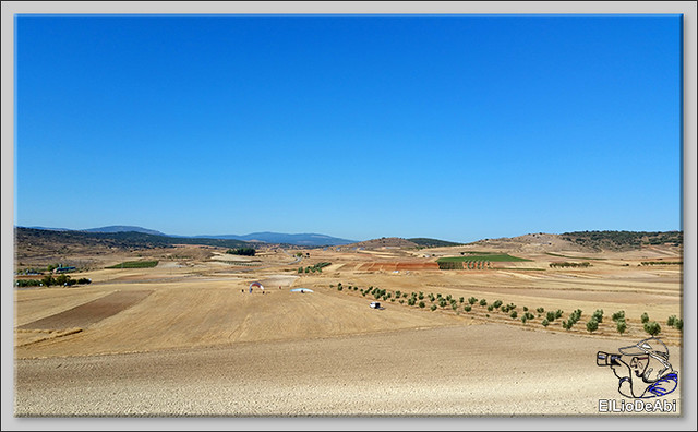 Volar en paratrike en Rioja Baja (6)