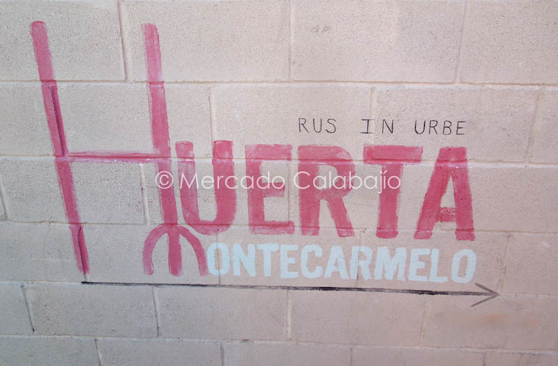 MERCADO DE CAMPO-5