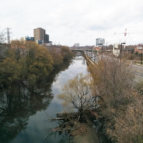 Looking up the Don River #toronto #donriver #rivers