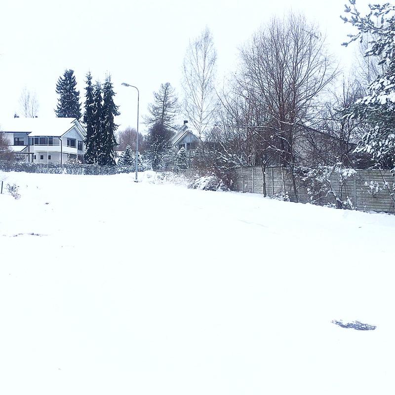 winteryy