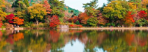 秋色の水面