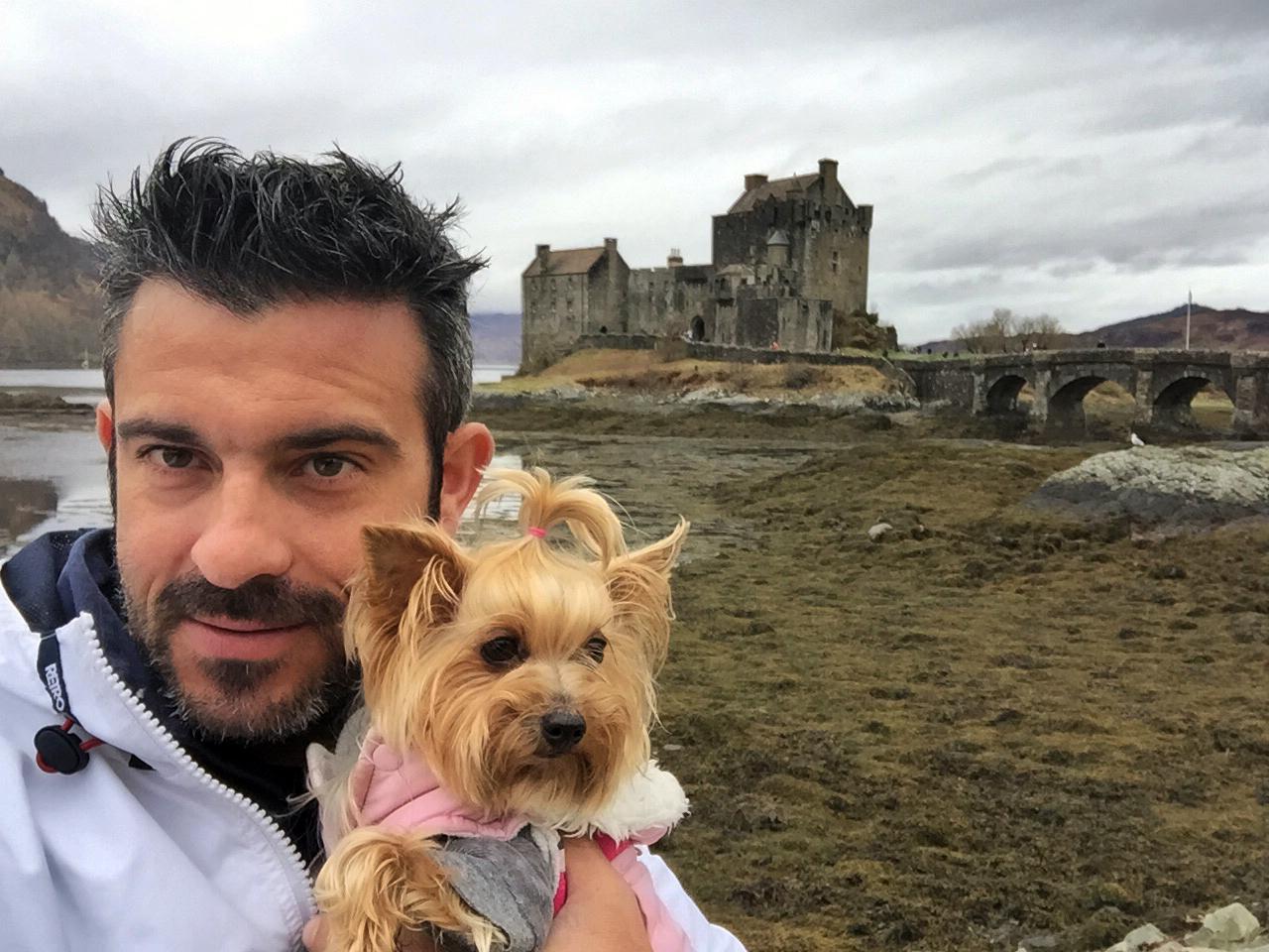 Viajar con Mascota mascotas - 30941135895 01c0e5f083 o - Cómo viajar con perros y mascotas