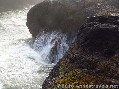 Water rushes back into the sea at Cape Perpetua, Oregon
