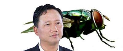 trinhxuanthanh09