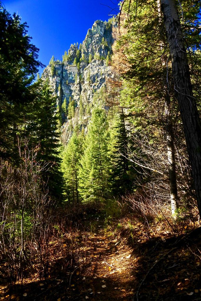 Cabin Lake trail 8