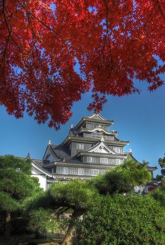 Okayama Castle on NOV 22, 2016 vol01 (8)
