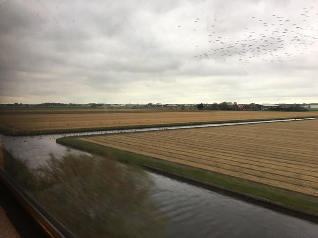 Train to The Hague.