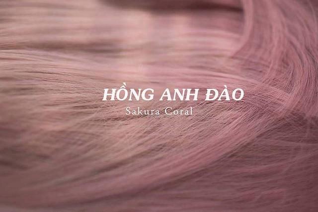 Mầu tóc hồng Anh đào