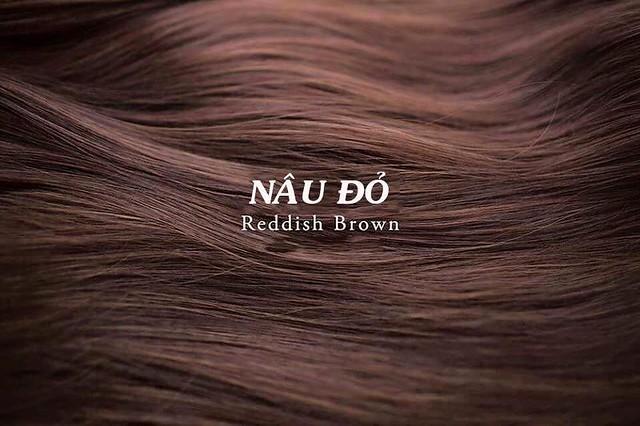Mầu tóc nâu đỏ