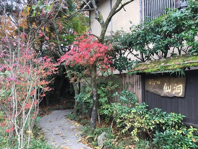 由布院知名住宿點「仙洞螢之宿」,入口很隱密的感覺XD