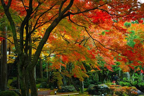 しょうざんリゾート庭園