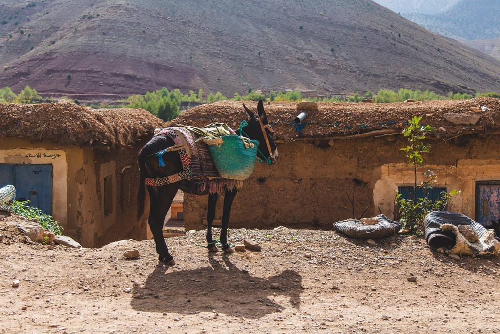 Marokko-14