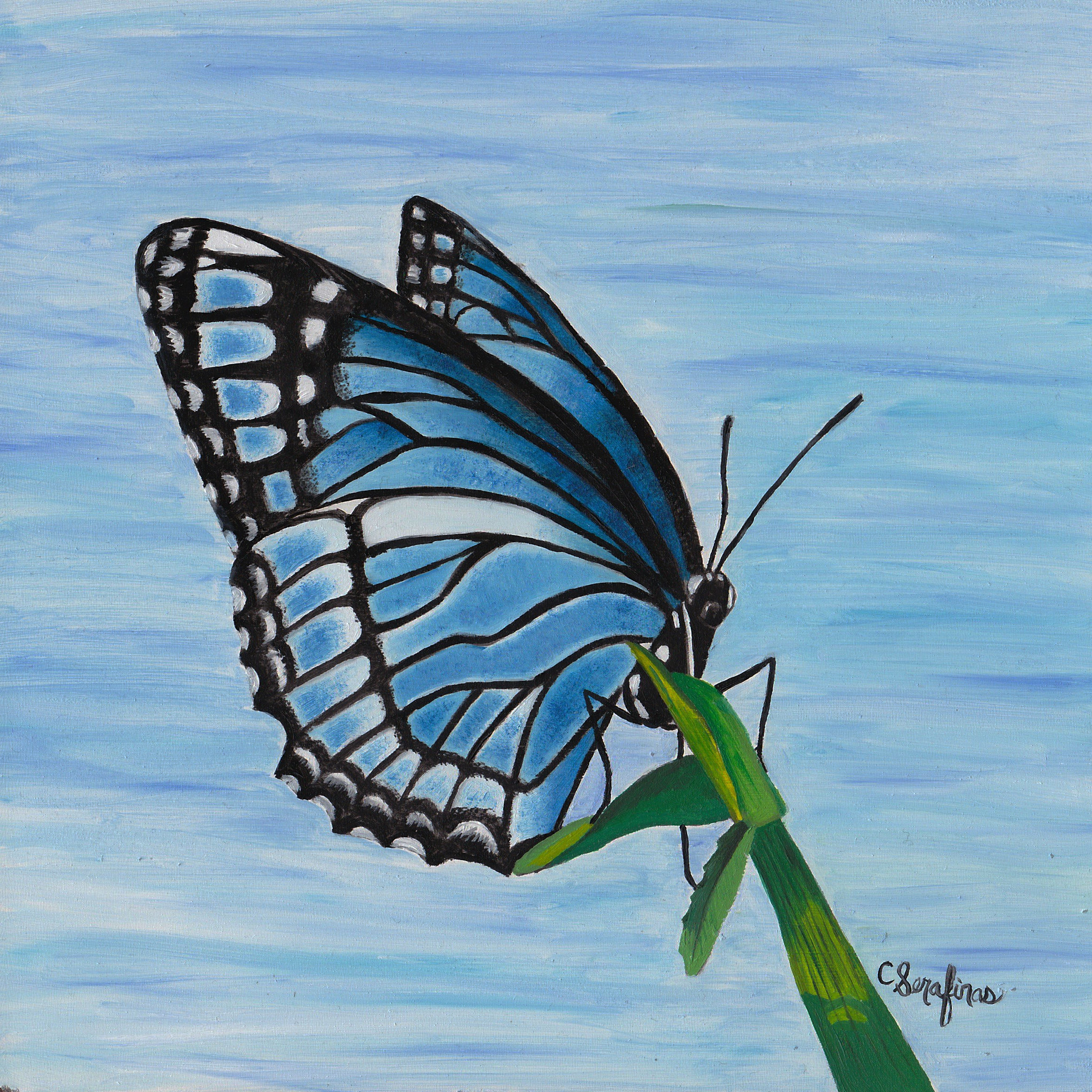 Serafinas-butterfly