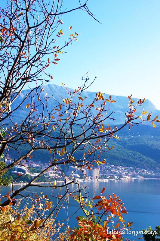 Вид в горах Черногории в августе