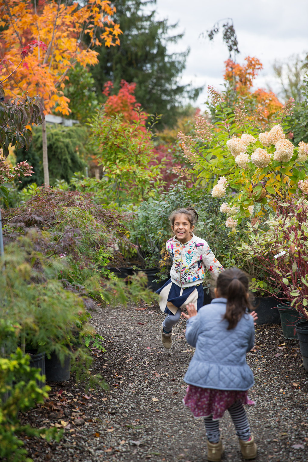 Leaf peeping and Favorite Fall Activities