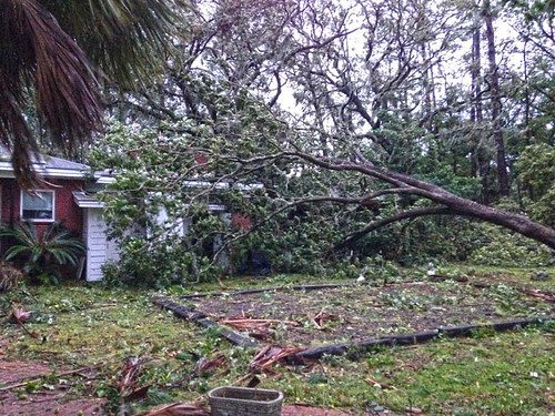 After Hurricane Matthew at the Undisclosed Location   (8)