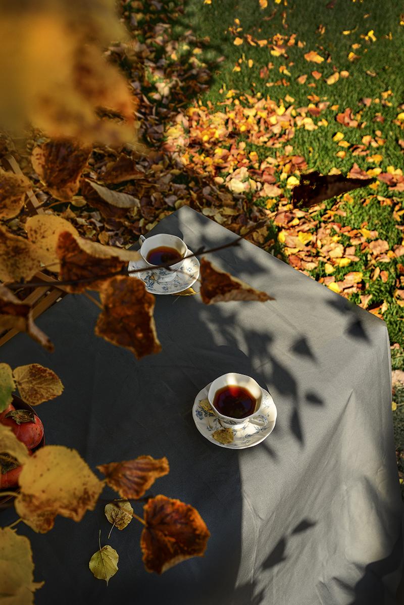Teabackyard4-800PX-SimiJois-2016