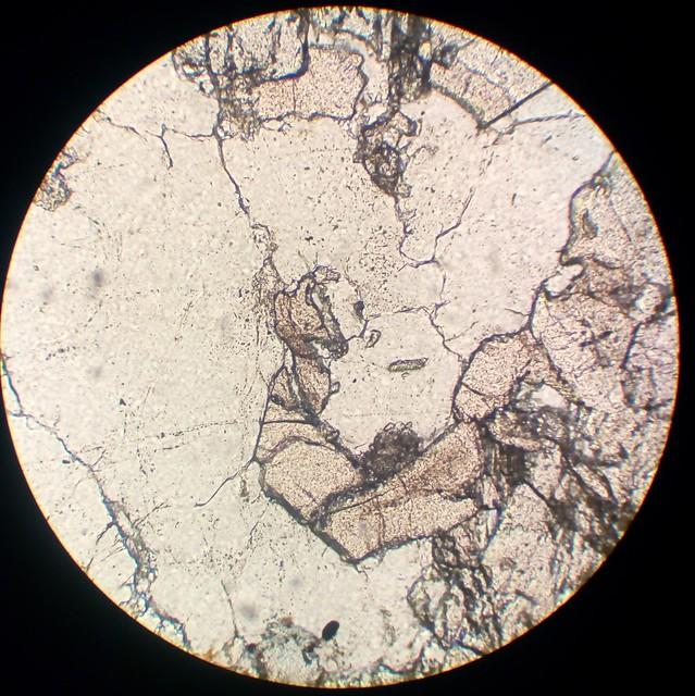 Garnet (30 µm thin section, PPL)