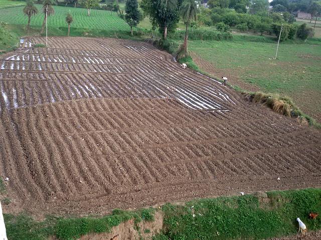 छोटी कालीसिंध नदी के पानी से सिंचाई करते किसान