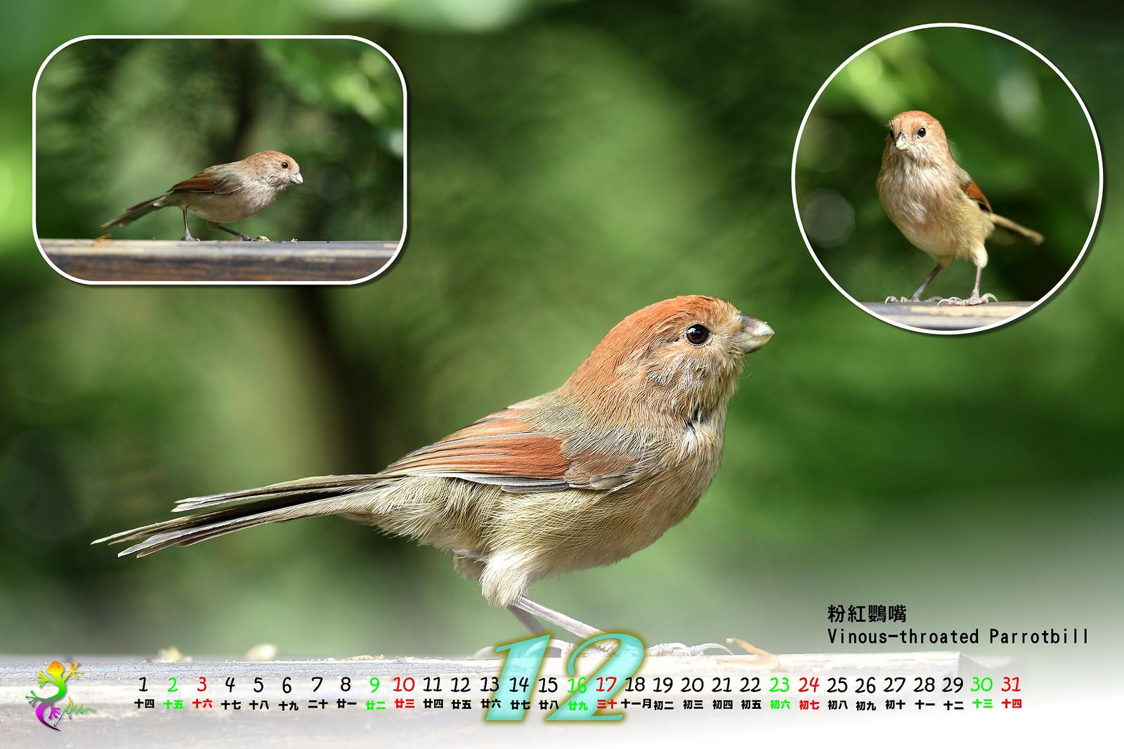 Calendar2017_2_13