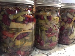 pickled 3 bean salad IMG_8539