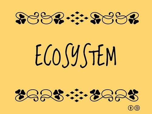 Buzzword Bingo: Ecosystem