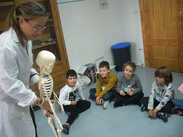 MY SKELETON 1º B