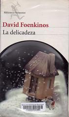 David Foenkinos, La delicadeza