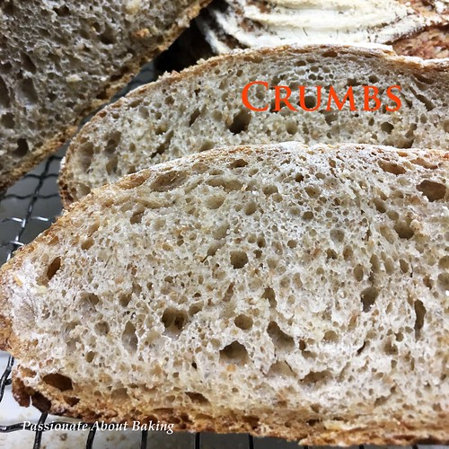 boules_wholewheatrye07