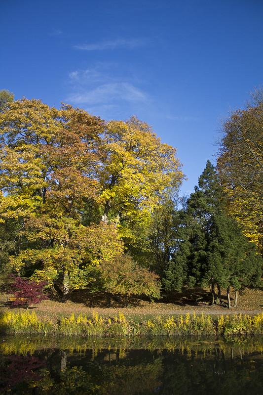 Hösten bjuder verkligen på en färgexplosion