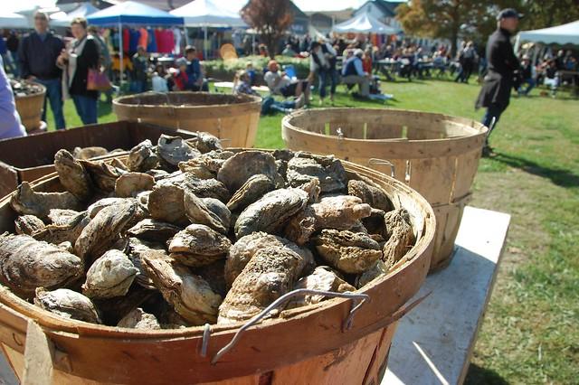 Festival: OysterFest