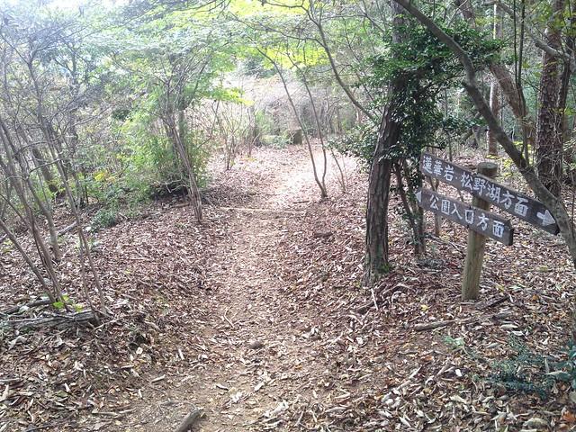 鬼岩公園 蓮華岩・烏帽子岩コース 散策路