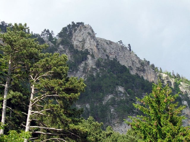 Hohe Wand - Zentennium 235m, (6-)