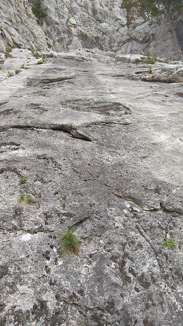 Tomi&Bónis: Hohe Wand Zentennium 235m (6-)