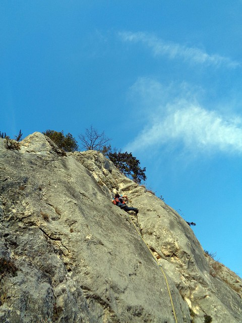 Hohe Wand - Steinbockalarm 245 m (7-)