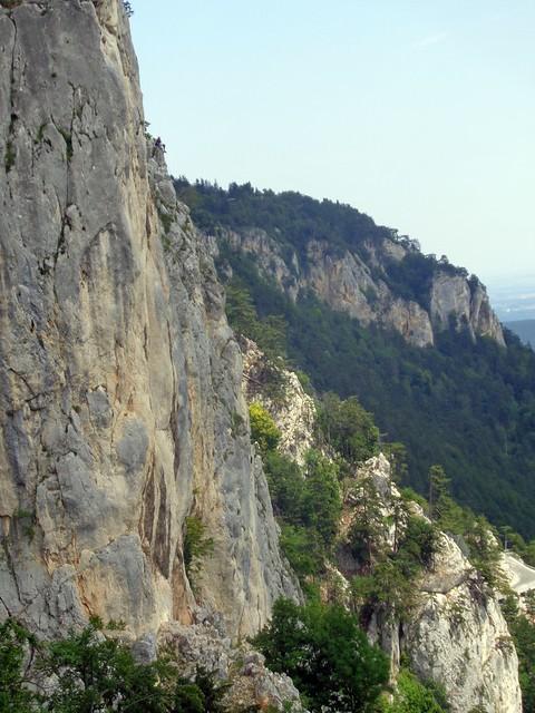 Hohe Wand – Trüffelschwein 215m (7)