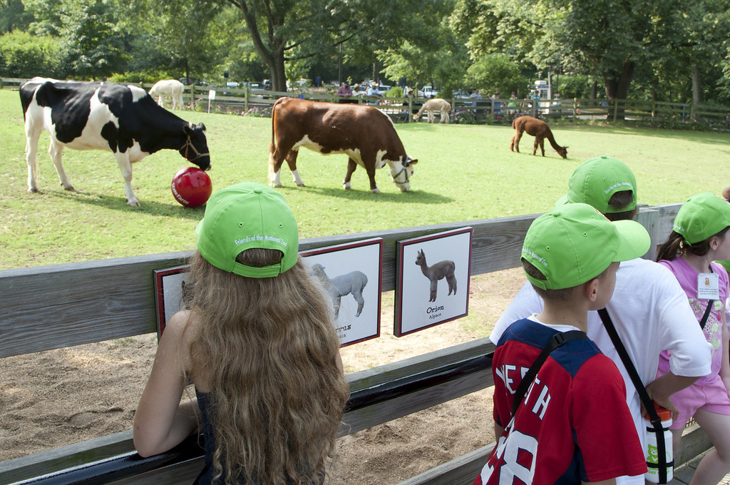 State Farm Kids Farm. Photo: Smithsonian National Zoo.