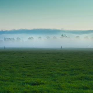 Farm Grass | by ►CubaGallery