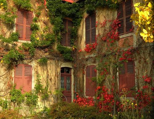 La maison du ginkgo a les yeux clos endormie derri flickr - Maison ginkgo ...