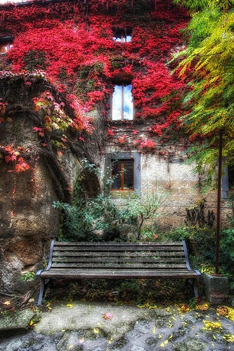 La banca con le foglie rosse | by Hitman.47 (BuriedDreams.nl)