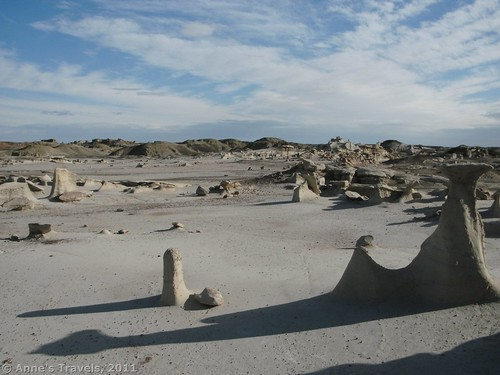 One area of weird formations in Bisti Wilderness, New Mexico