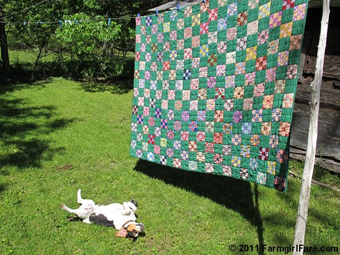Green Vintage Quilt Love 1 | by Farmgirl Susan