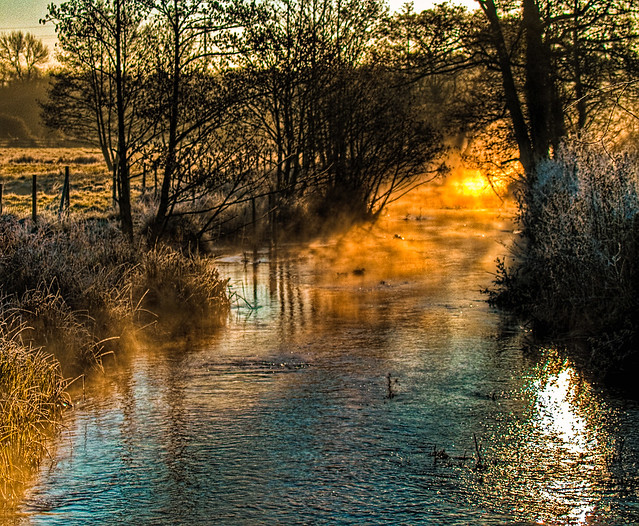 Winter morning sunshine on a stream at Anton Lakes Local Nature Reserve, Andover